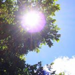 猛暑の時期を狙う遺品整理悪徳業者